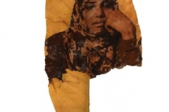 Alya Abdulhameed Mohamed Ahmed Rashed Al Hosani Digital Print Transfers to Wood and Leaves